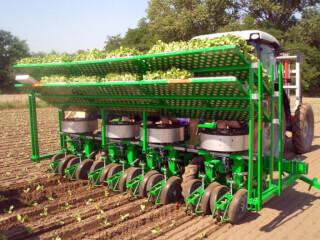 Mașină de plantat (plantatoare), Sfoggia F-C 10