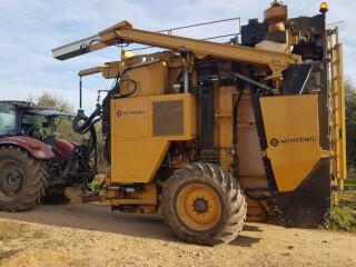 Mașină de recoltare pentru culturi de măslini superintensive, Moresil 25